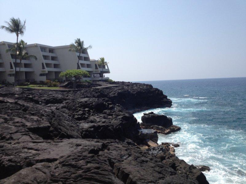 Manta Ray Surface Swim