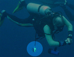 Dangling Octopus Regulator