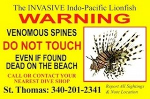 Lionfish Warning Sign