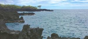 Kona Shore Dives