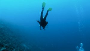 Preventing Diver Fatalities