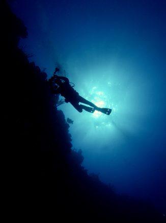 Roatan Scuba Diver - Underwater Photography