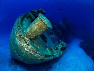 Underwater Photography Grand Cayman - Kittewake Underwater
